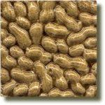 Angela Evans Peanut tile