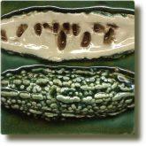 Angela Evans Bitter Gourd tile